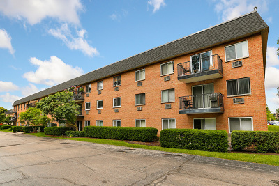 Naperville Condo/Townhouse New: 1052 North Mill Street #104