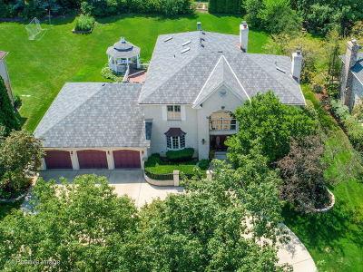 Burr Ridge Single Family Home New: 11631 Briarwood Lane