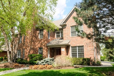 Palatine Single Family Home For Sale: 307 North Westminster Drive