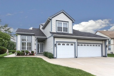 Bartlett IL Single Family Home Contingent: $339,000