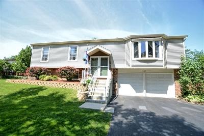 Bolingbrook Single Family Home For Sale: 937 North Ashbury Avenue