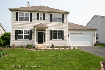 Bolingbrook Single Family Home For Sale: 1590 Manhattan Street