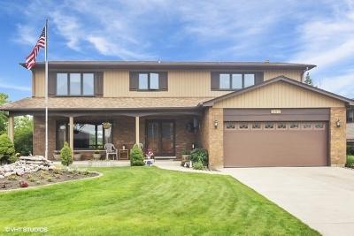 Schaumburg Single Family Home New: 582 Lorelei Drive