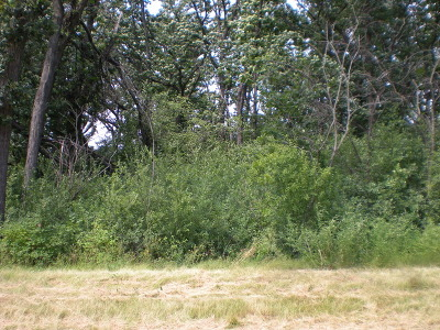 Mc Henry County Residential Lots & Land For Sale: 9990 Highland Lane