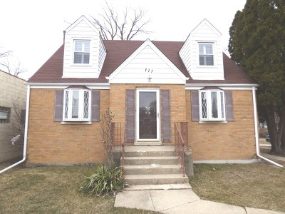 Palatine Single Family Home For Sale: 117 South Northwest Highway