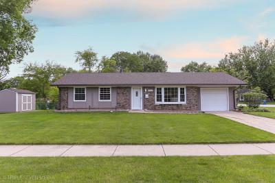 Schaumburg Single Family Home New: 136 South Braintree Drive