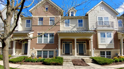 Hanover Park Condo/Townhouse New: 5546 Cambridge Way