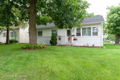 Mundelein Single Family Home New: 104 South Lake Street