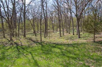 Ogle County Residential Lots & Land For Sale: 701 Plum Court