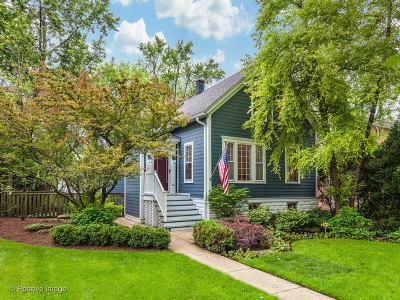 Winnetka Single Family Home New: 1072 Pine Street