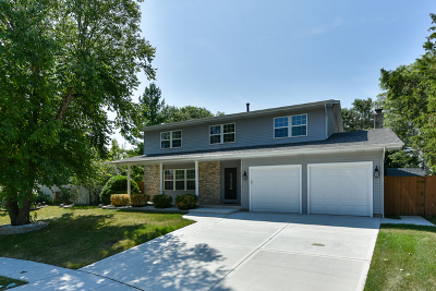 Bolingbrook Single Family Home For Sale: 4 Swan Circle