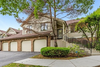Palos Heights Condo/Townhouse New: 13478 Turtle Pond Lane #13478