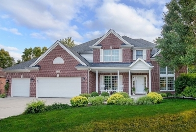 Naperville Single Family Home For Sale: 428 Verbena Court