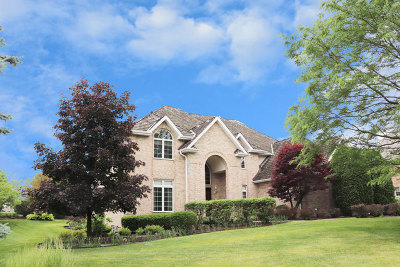 Orland Park Single Family Home For Sale: 15220 Alpine Drive