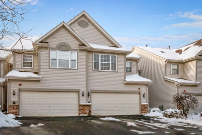 Lake Zurich Condo/Townhouse For Sale: 837 March Street