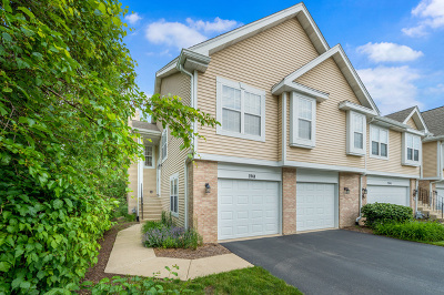 Downers Grove Rental New