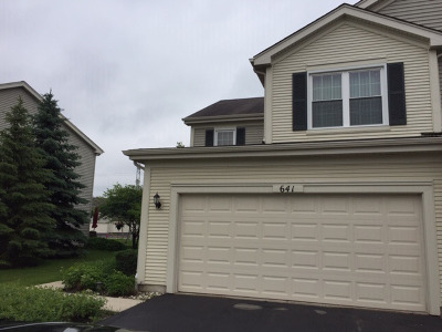 Round Lake Condo/Townhouse For Sale: 641 West Jonathan Drive