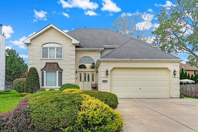 Palos Hills Single Family Home New: 10666 South 86th Avenue