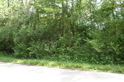 Joliet Residential Lots & Land For Sale: Lot 2 Hoberg Drive