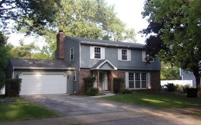 Wheaton Single Family Home For Sale: 2s525 Kiowa Drive
