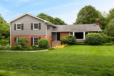 Palatine Single Family Home For Sale: 355 North Elmwood Lane