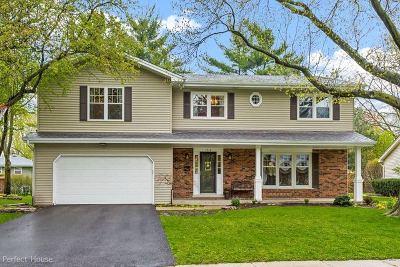 Naperville Single Family Home New: 1212 Hercules Lane