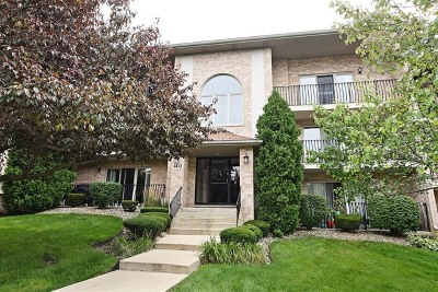 Downers Grove Rental New: 4413 Pershing Avenue #303