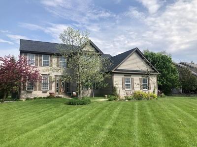 Crystal Lake Single Family Home New: 8420 Watson Circle