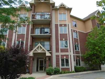 Niles Condo/Townhouse For Sale: 8120 West Park Avenue #201