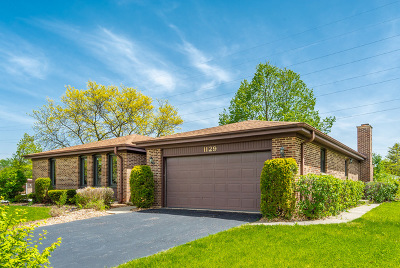 Palatine Single Family Home New: 1129 East Carpenter Drive