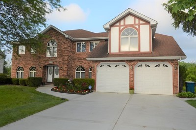 Schaumburg Single Family Home For Sale: 828 Spring Valley Court