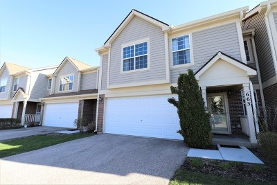 Palatine Condo/Townhouse For Sale: 663 East Whispering Oaks Court