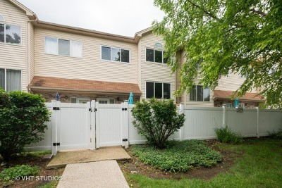 Aurora Condo/Townhouse New: 321 Park Ridge Lane #G