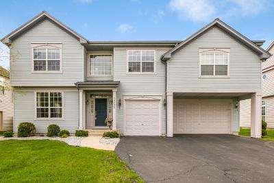 Bolingbrook Single Family Home New: 1351 Danhof Drive