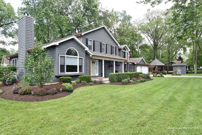 Warrenville Single Family Home For Sale: 3s211 Home Avenue
