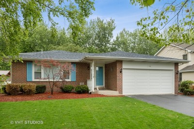 Bolingbrook Single Family Home New: 1710 Hidden Valley Drive
