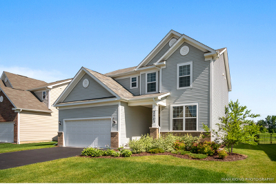 Naperville Single Family Home For Sale: 2507 Balsam Cove Road