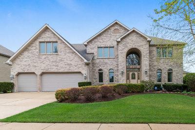 Single Family Home New: 3140 Kewanee Lane