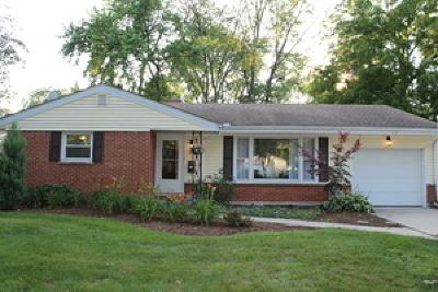Palatine Single Family Home For Sale: 428 South Cedar Street
