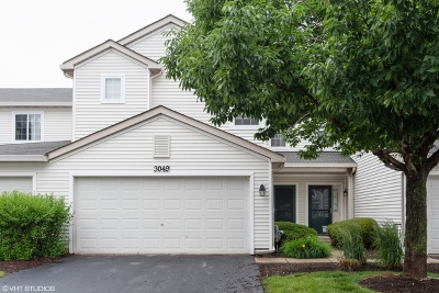 Plainfield Condo/Townhouse New: 3049 Creekside Drive