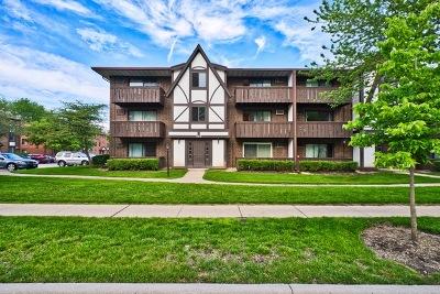 Vernon Hills Condo/Townhouse For Sale: 1012 Centurion Lane #8