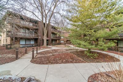 Oak Lawn Condo/Townhouse New: 9609 Austin Avenue #3E