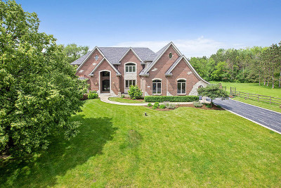 Orland Park Single Family Home New: 7800 Forestview Drive