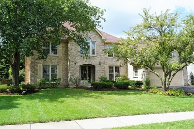 Naperville Rental For Rent: 2619 Modaff Road