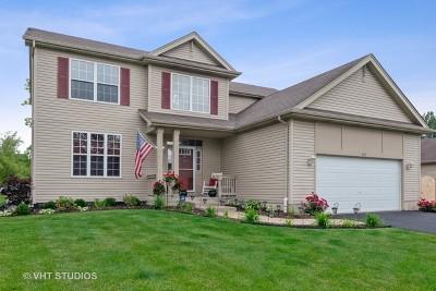 Kane County Single Family Home New: 583 Donna Avenue