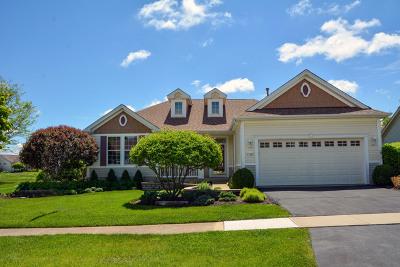 Kane County Single Family Home New: 12306 Hickory Court