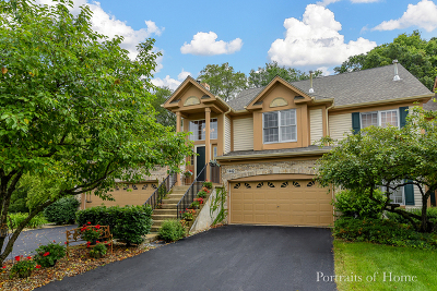 Naperville Condo/Townhouse New: 1442 Whitespire Court