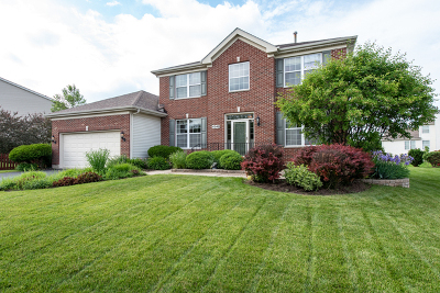 Libertyville Single Family Home For Sale: 4540 West Westchester Lane