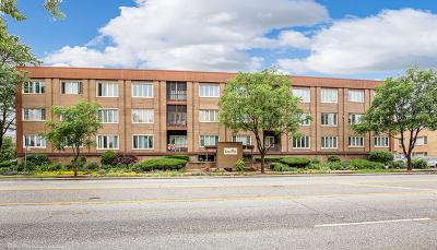 Oak Lawn Condo/Townhouse New: 10048 South Pulaski Road #3C