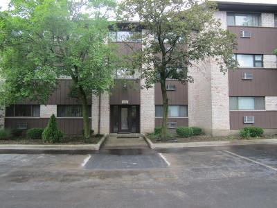 Downers Grove Rental New: 4428 Arbor Circle #6